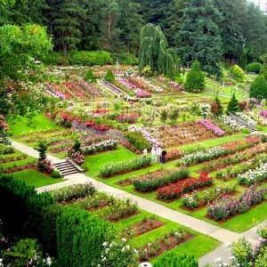 مقاله های باغبانی